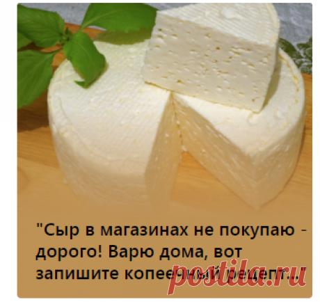 """""""Сыр в магазинах не покупаю - дорого! Варю дома, вот запишите копеечный рецепт...""""  """"Молоко есть?"""" - есть! """"А творог есть?"""", - есть! А сыр в магазине где, дорогой? Правильно, дорогой! А то, что за 10 рублей можно купить 20 грамм сыра из настоящего молока - так это только у меня, да еще у десятка человек есть. А у остальных - ни у кого. Ни у кого нет и не будет!"""