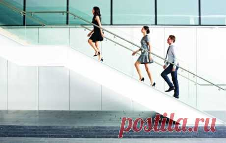 На пути к мечте часто не бывает лифта, иногда к самой заветной цели важно подняться по лестнице.