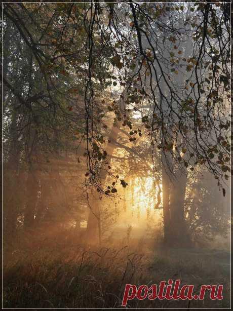 lni9 (Надежда) — «Осенний вальс» на Яндекс.Фотках