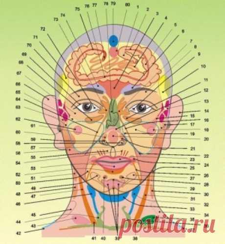 Наши болезни написаны у нас на лице    Давно известно, что по состоянию некоторых органов чувств, например, глаз или языка, специалист может понять, какие проблемы с внутренними органами есть у пациента. .На основании такого метода опре…