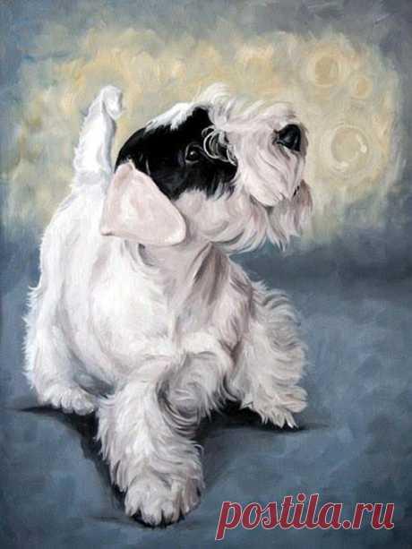 Собаки с изобразительном искусстве: runm