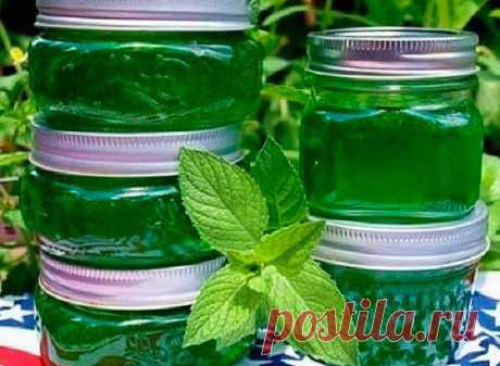 Syrup from mint: how to prepare mint syrup in house conditions - a tasty dessert the hands