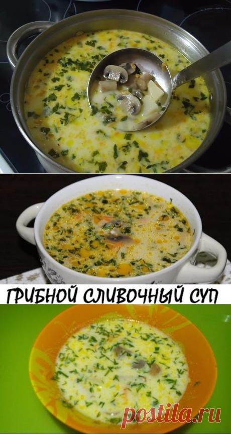 Самый вкусный грибной сливочный суп ! Сочетание сливок, плавленого сыра и грибов — так вкусно, просто пальчики оближешь.