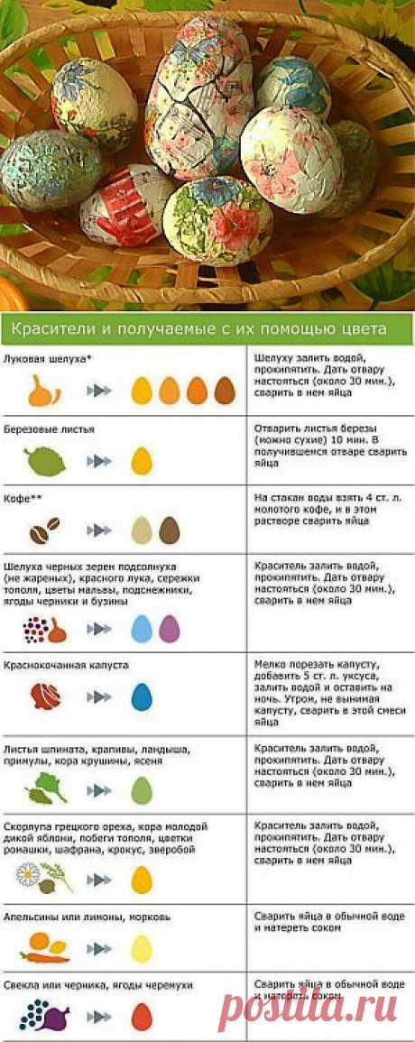 Как окрасить яйца натуральными красителями | Пасха | Само Совершенство