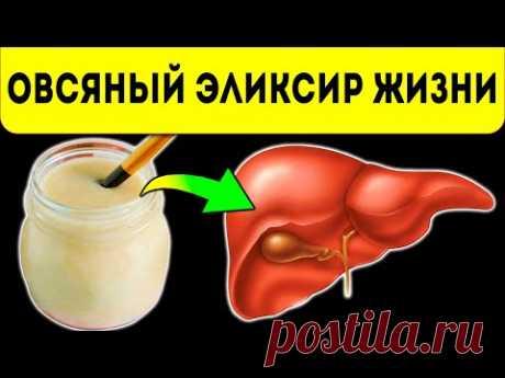 Запомни раз и навсегда: овсяный кисель способен исцелить печень, желудок, ЖКТ и самое главное он