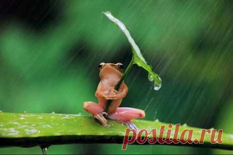 And when this rain will end?)))