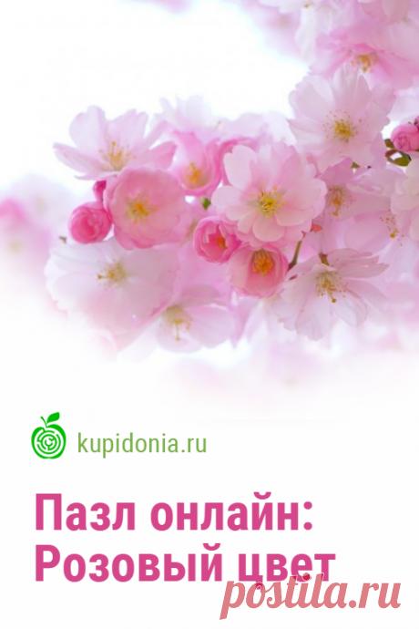 Пазл онлайн: Розовый цвет. Красивый пазл онлайн с цветущей сакурой из серии «Весенние цветы». Собирайте пазлы на сайте! Это отличная тренировка для мозга.