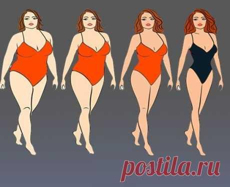 Гормоны и лишний вес: какие отвечают за полноту ~ SLOVESA - журнал о развитии Что такое гормональный вес? Какие гормоны увеличивают вес - читайте на портале slovesa.in.ua