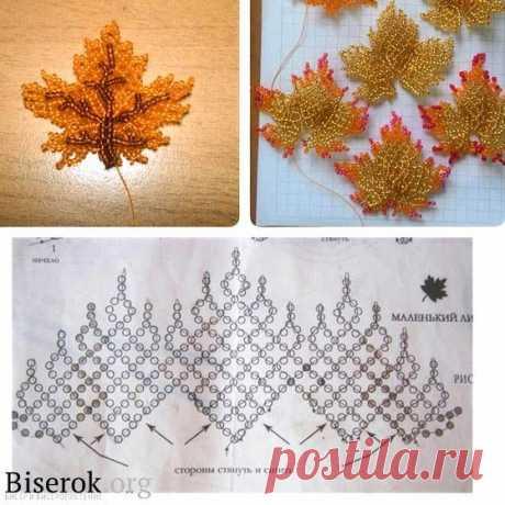 (335) Pinterest