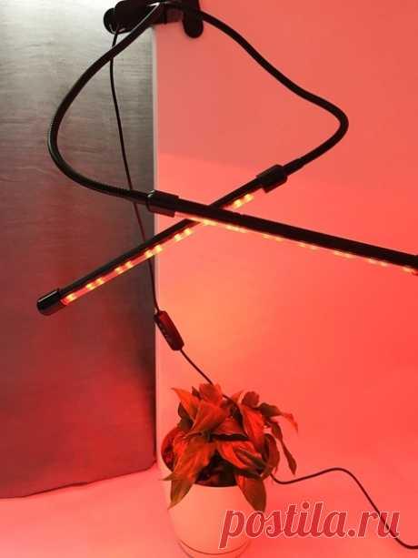 🔥ФИТОСВЕТИЛЬНИК НА ПРИЩЕПКЕ (или почему вам нужно выбрать нас) 👇🏻Преимущества: -Ваши растения получают необходимое освещение независимо от погоды и продолжительности солнечного дня -Продлевает цветение вашего растения, насыщает цветом и обеспечивает здоровый фотосинтез -Таймер и выбор уровня света позволят вам выбрать нужный уровень света и длительность подсветки растения -Может освещать как одно, так и несколько растений на 360 градусов 👇🏻Технические характеристики: -Количество светодиодов на…