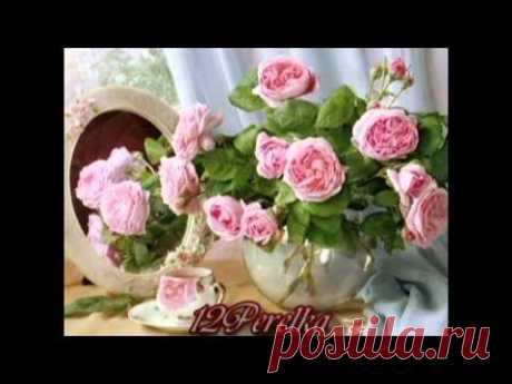 ♥♫ ♥♫  Lady Rose  ♥♫ ♥♫