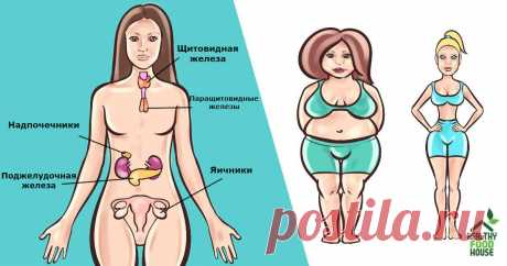 There are 6 hormones which prevent you to grow thin. Here what to do Detailed instructions with each of them.