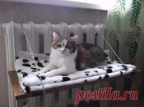 Лежанка для кошек своими руками: выкройки, пошаговая инструкция