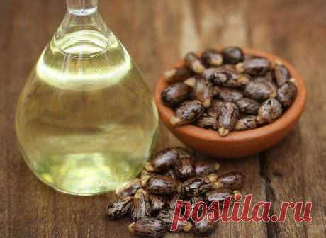 Касторовое масло и способы его применения - Шаг к Здоровью
