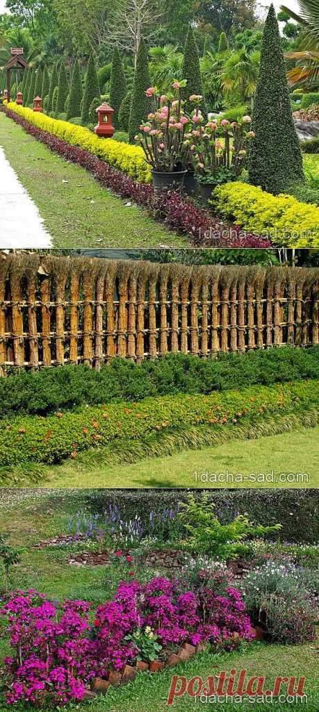 Кустарниковый миксбордер — какие виды кустарников посадить, оформление миксбордера