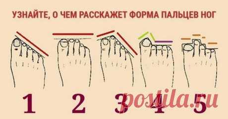 Форма пальцев на ноге расскажет о вашем характере Всем известно, что по линиям на ладонях рук можно гадать и предсказывать будущее. А ведь и ступни ног могут очень многое рассказать о характере, темпераменте и судьбе человека. Наверное, вы замечали, ...