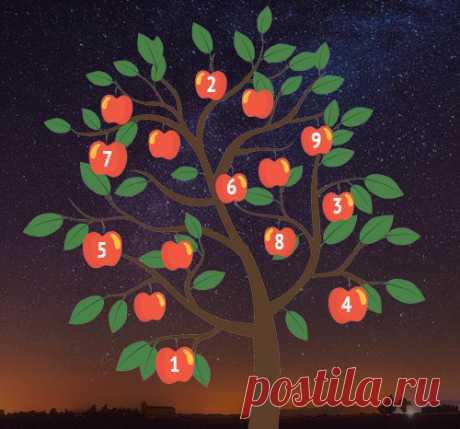 Гадание «Дерево желаний»: что ждет вас в ближайшее время