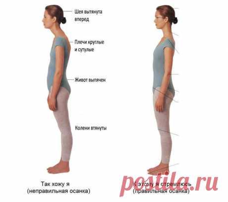 Упражнение «Кисточка»: красивая шея, идеальная осанка!   Диеты со всего света