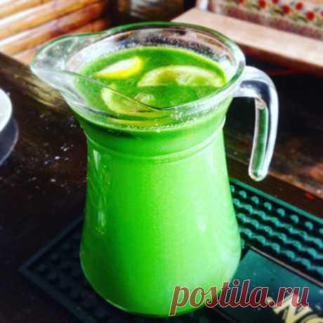 Очень зелёный зимний напиток из леса. Готовим его, когда хочется чего-нибудь свежего и ароматного 👍☺️💚 | Живые вещи | Яндекс Дзен