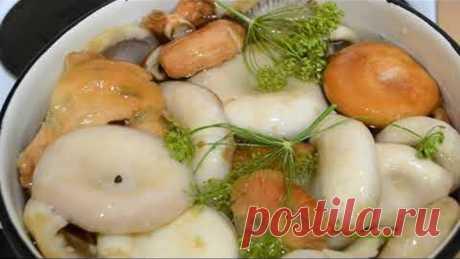 Соленые грузди, хрустящие!!! Проверенный рецепт, очень вкусно и просто!!!