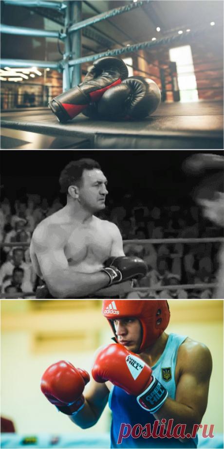 Боксер отвечает, почему бокс так популярен, хоть и 1-ый среди травмоопасных видов спорта   Спорт и ЗОЖ   Яндекс Дзен