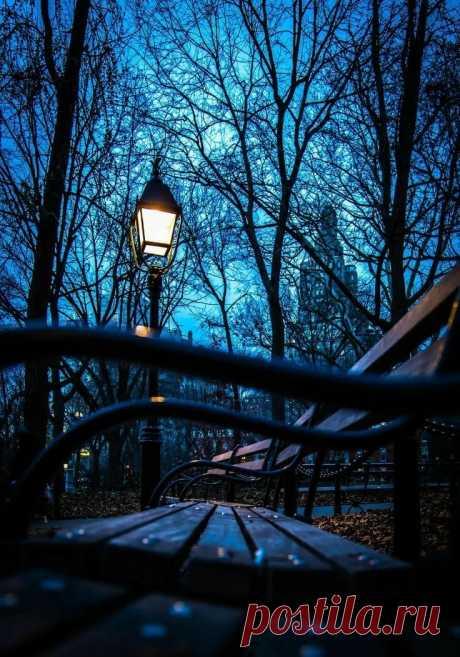 Pinterest'teki 25'den fazla en iyi Blue hour fikri Electric blue, Toronto ve Plaj gecesi в Яндекс.Коллекциях