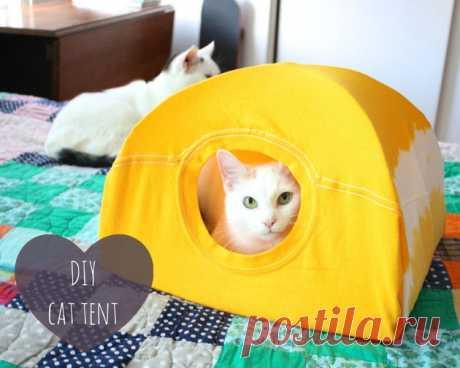 Домик для кота из футболки за 10 минут.