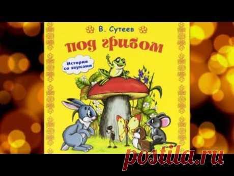 Под грибом. Сказка Сутеева. Аудиосказка для малышей. - YouTube