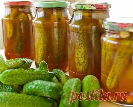 Огурцы с кетчупом чили на зиму в литровых банках без стерилизации 7 самых вкусных рецептов огурцов с кетчупом чили