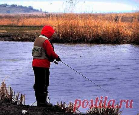 Дедовская тяжёлая блесна - самоделка для ноябрьской щуки   Рыбалка для людей   Яндекс Дзен