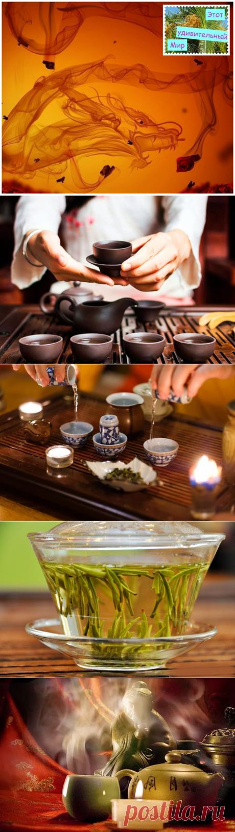 Чайное опьянение - что это? Какая в нём польза? И что значит чайный пьяница?