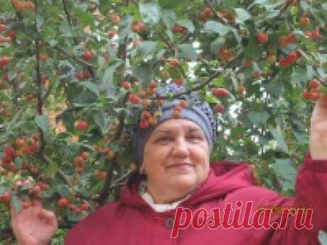 Мила Мезина