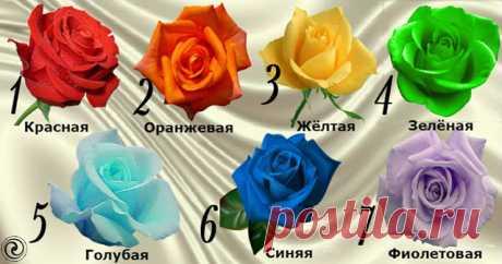 Выбранная роза расскажет о вашей настоящей чакре - Эзотерика и самопознание