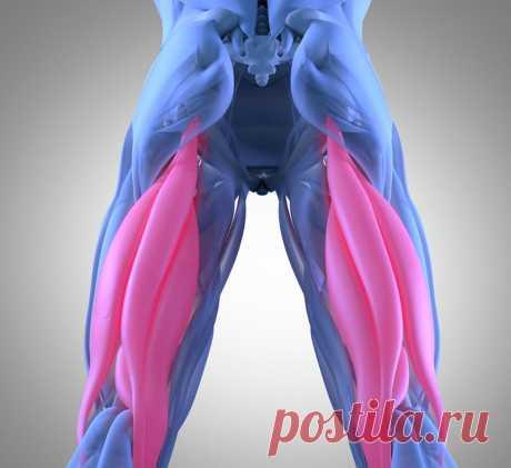 Приседать НЕ надо! 5 ультракрутых упражнений для упругой попы и грациозных ног Читать далее...