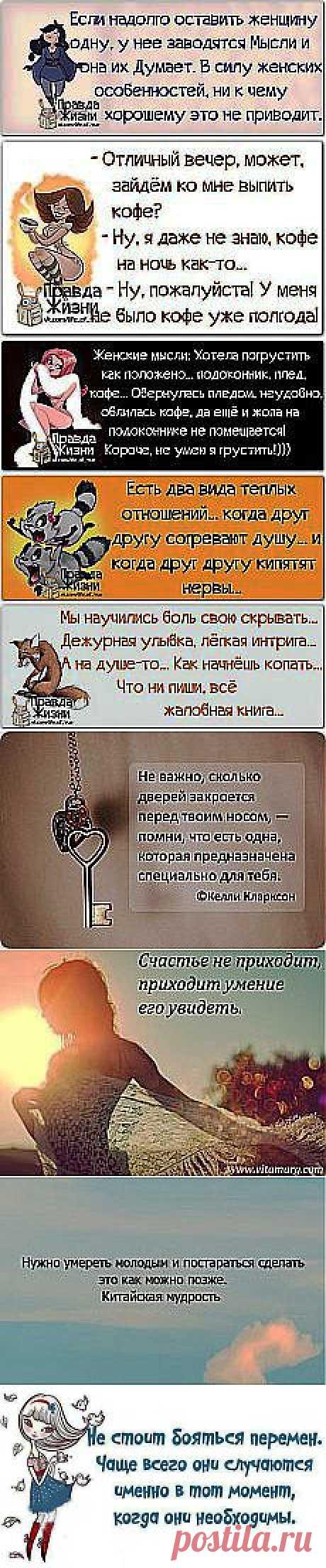 moonlightlutkevich Люткевич: моя | Postila.ru