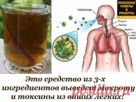Это средство из 3-х ингредиентов выведет мокроту и токсины из ваших легких! Лучшее средство от кашля!