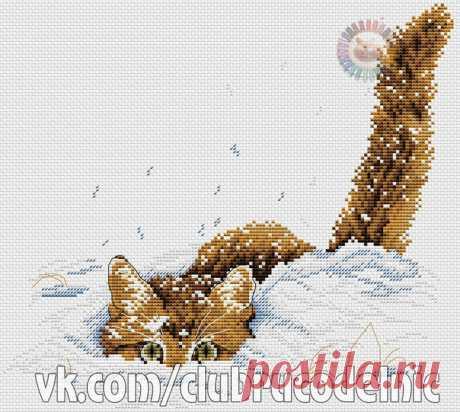 ВЫШИВКА-Кот в снегу