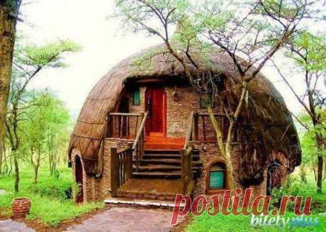 Национальный парк Серенгети,Танзания.