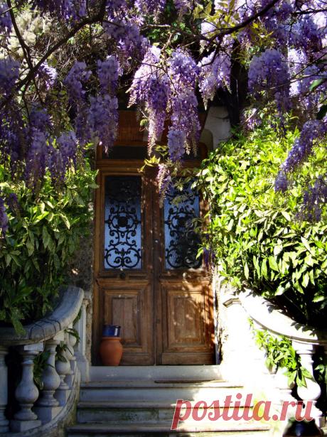 Цветы и двери - красота!.