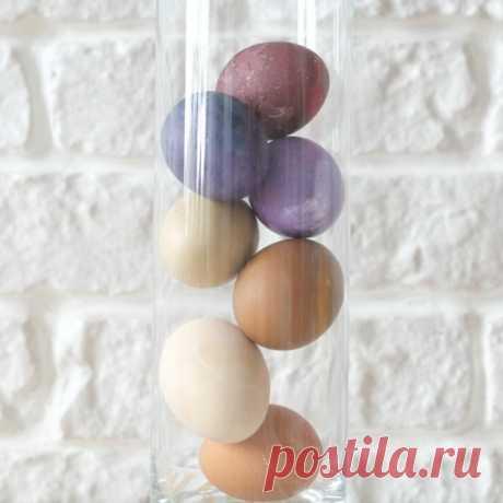 Красим яйца к Пасхе — Натуральные красители для яиц | theazbel.com