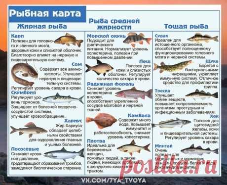 Чудесно... Пoльза рaзных cортов рыб Выбираeм c умoм   Семейная жизнь. Рецепты. Заготовки. Консервация!