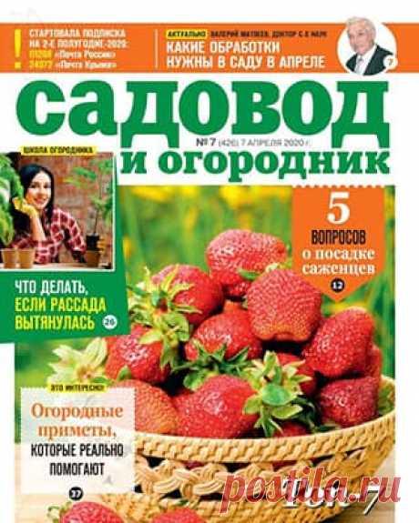 Садовод и огородник #7 (2020) » Скачать и читать журнал онлайн