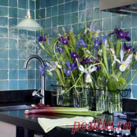 Какая вода лучше для цветов, холодная или теплая?