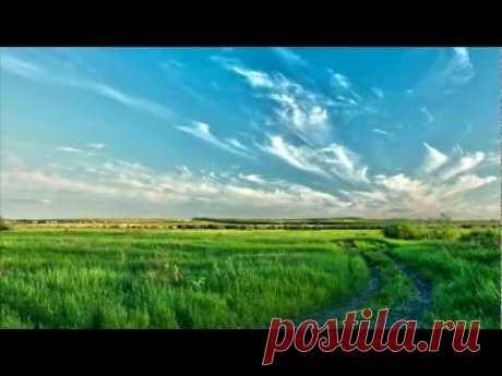 Россия. Саратовская природа 2011.