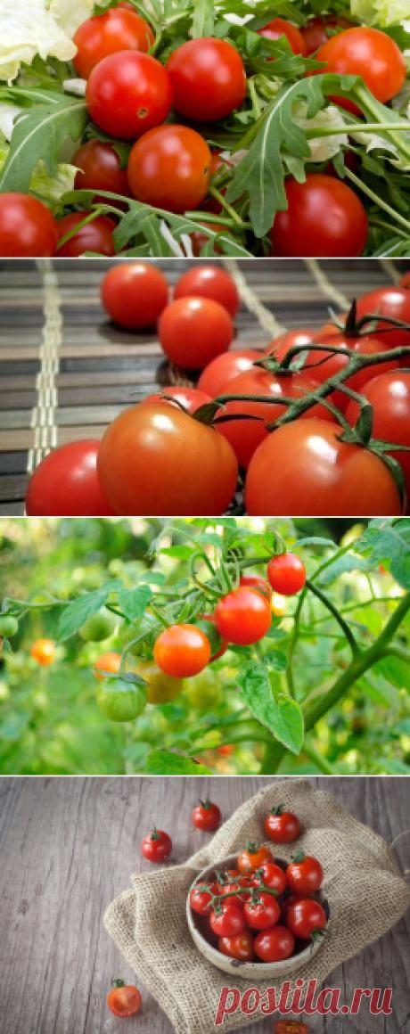 Как замариновать помидоры? Вкусно! | Еда и кулинария