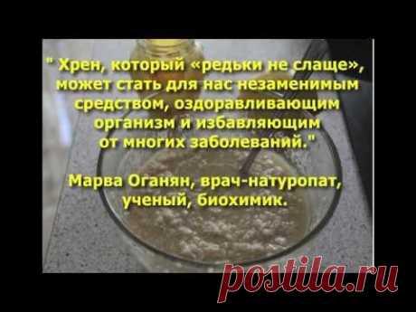 """""""Великолепный хрен"""" - рецепт Марвы Оганян от всех хронических болезней."""