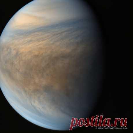 Картинки Венеры (35 фото) ⭐ Забавник