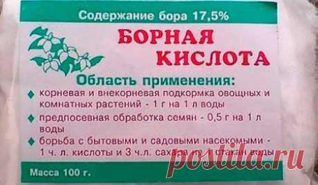 El ácido bórico para los tomates - la rociadura, la proporción, las revocaciones