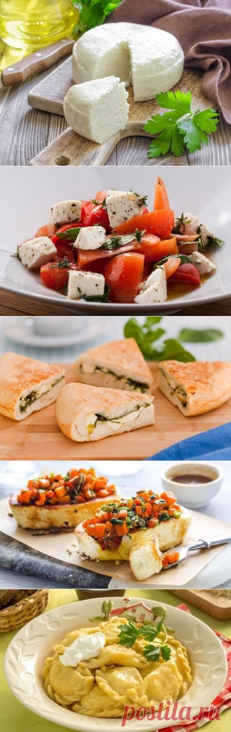 5 блюд с адыгейским сыром