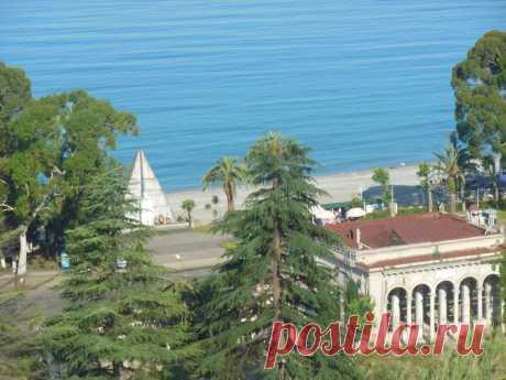 Отдыхали как пенсионеры и нисколько не пожалели: путешествие в Абхазию   Экспертиза кота Василия   Яндекс Дзен